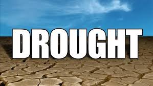 Chamber Assesses Drought Impacts On Business