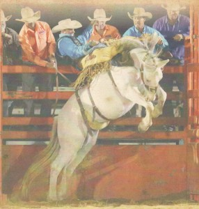 Forbes Rodeo-2