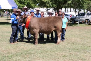 FHS Canberra Show 2