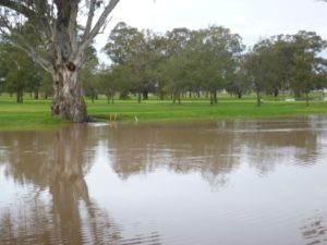 View across the 9th water to 15th - comp